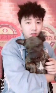 就是对@尹先宇这种对小动物有爱心的男生超级没有抵抗力